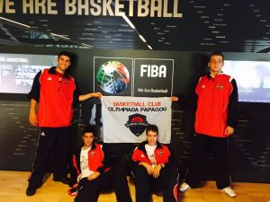 FIBA-16